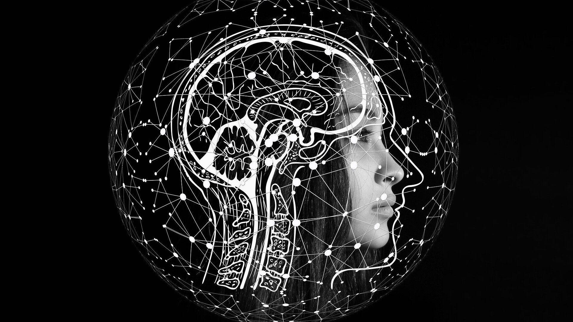 Εγκέφαλος - Sputnik Ελλάδα, 1920, 30.09.2021