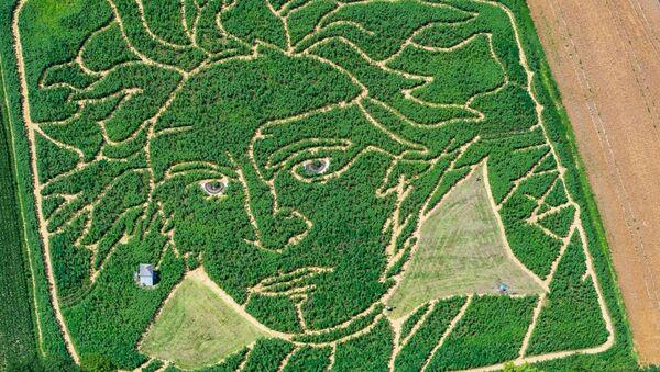 Γερμανοί αγρότες έφτιαξαν λαβύρινθο στο χωράφι τους στο σχήμα του προσώπου του Μπετόβεν - Sputnik Ελλάδα