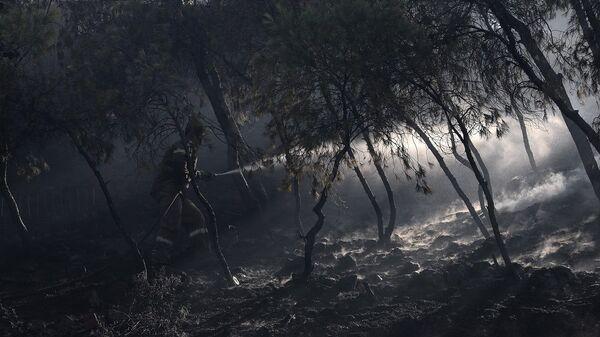Φωτιά στις Κεχριές Κορίνθου - Sputnik Ελλάδα