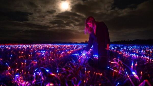 Χωράφι στην Ολλανδία καλλιεργεί πράσα με τη βοήθεια κόκκινου, μπλε και υπεριώδους φωτός - Sputnik Ελλάδα