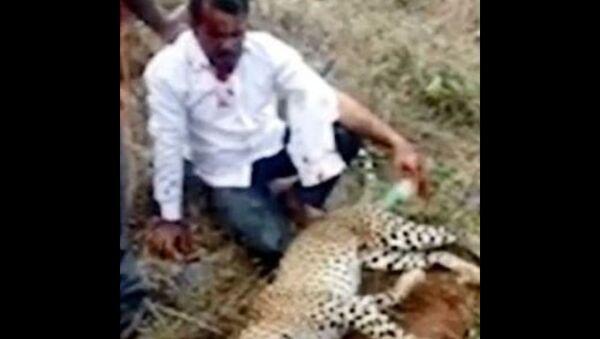 Άντρας στην Καρνάτακα της Ινδίας σκότωσε λεοπάρδαλη με γυμνά χέρια για να σώσει τη γυναίκα και το παιδί του - Sputnik Ελλάδα