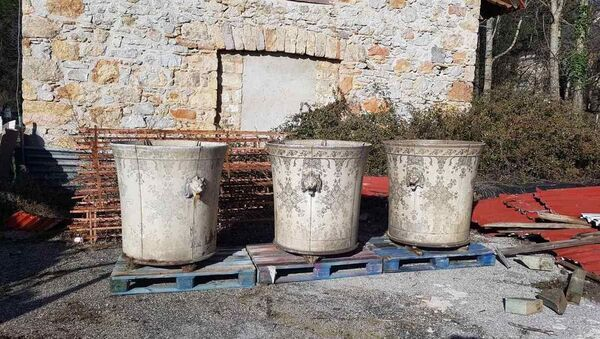 Κασπώ των ανακτορικών κήπων στο Τατόι - Sputnik Ελλάδα