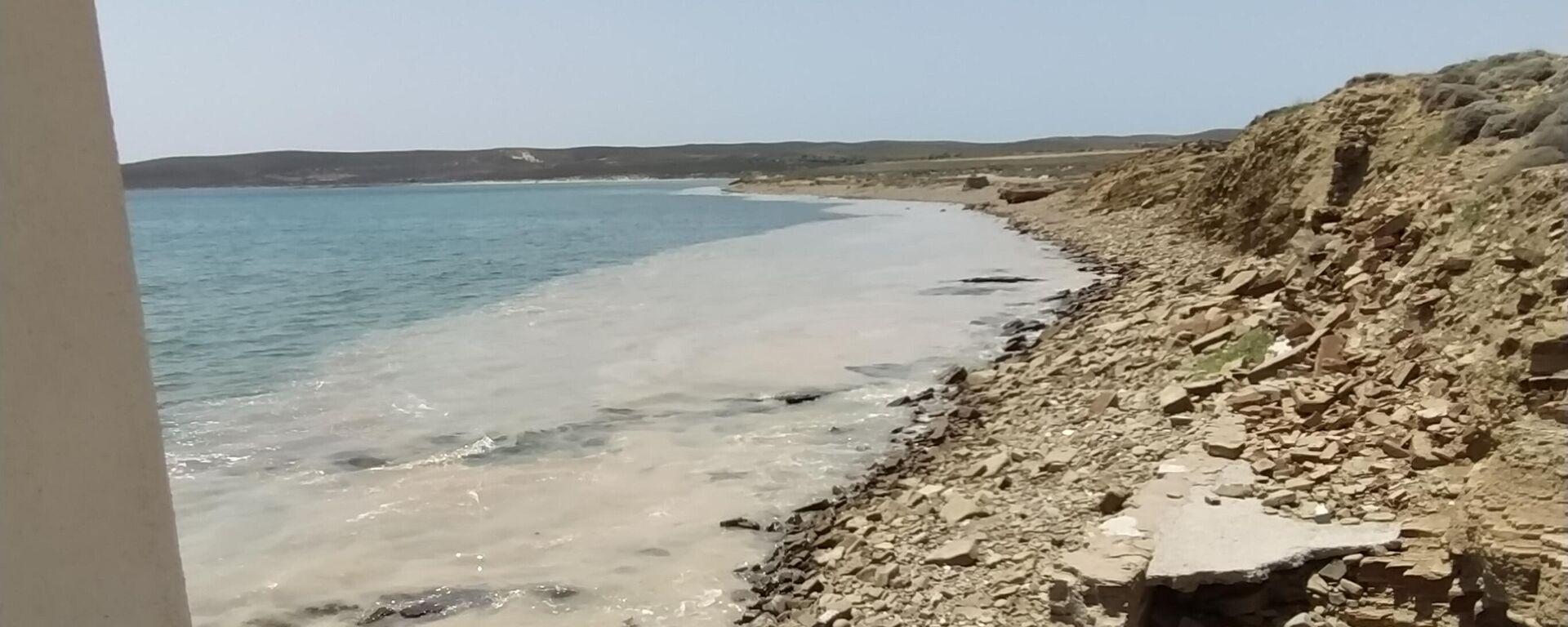 Στις ακτές της Ίμβρου η βλέννα από τη θάλασσα του Μαρμαρά - Sputnik Ελλάδα, 1920, 25.06.2021