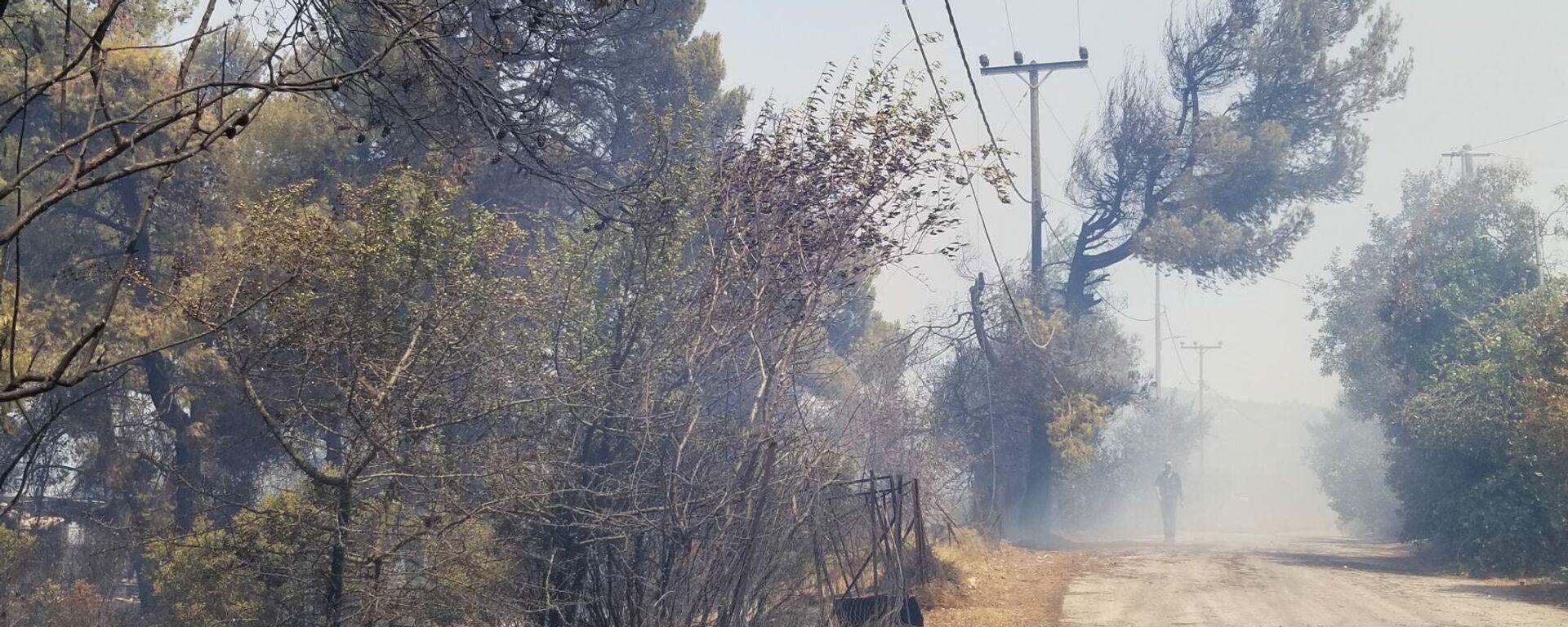Πυρκαγιά στη Σταμάτα - Sputnik Ελλάδα, 1920, 27.07.2021