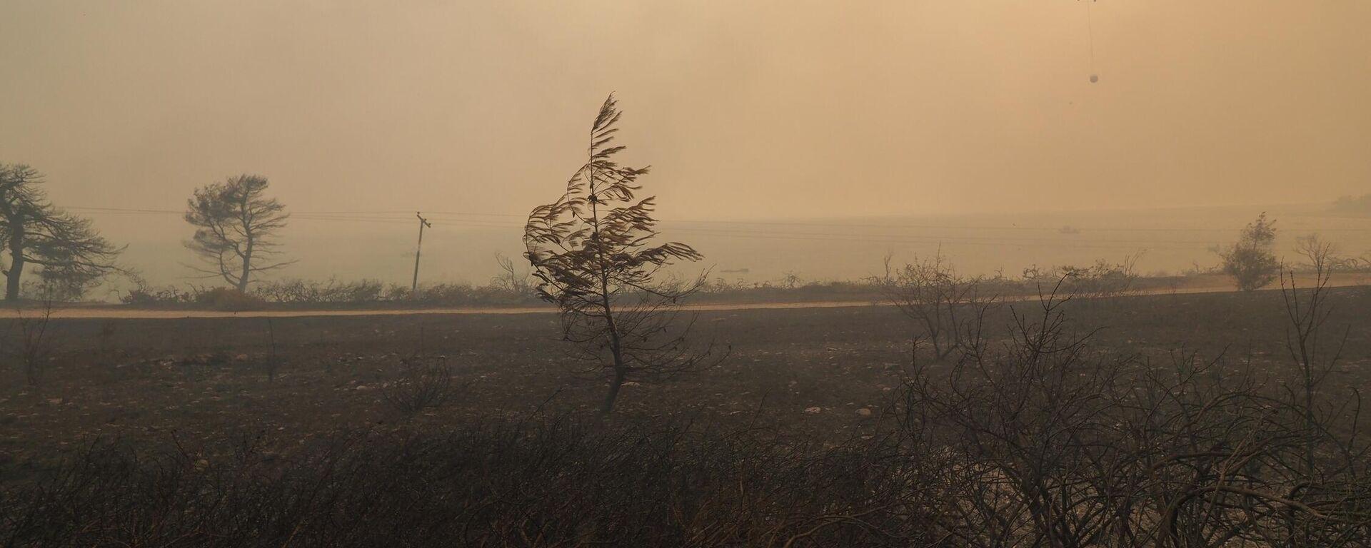 Κατάσβεση πυρκαγιάς στη Λίμνη Ευβοία - Sputnik Ελλάδα, 1920, 04.08.2021