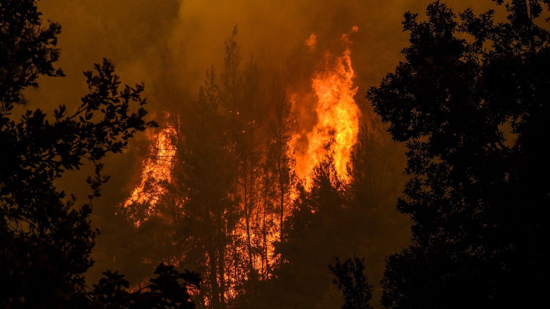 Μάχη να ελεγχθεί η πυρκαγιά έξω από το χωριό Γαλατσώνα - Sputnik Ελλάδα, 1920, 01.10.2021