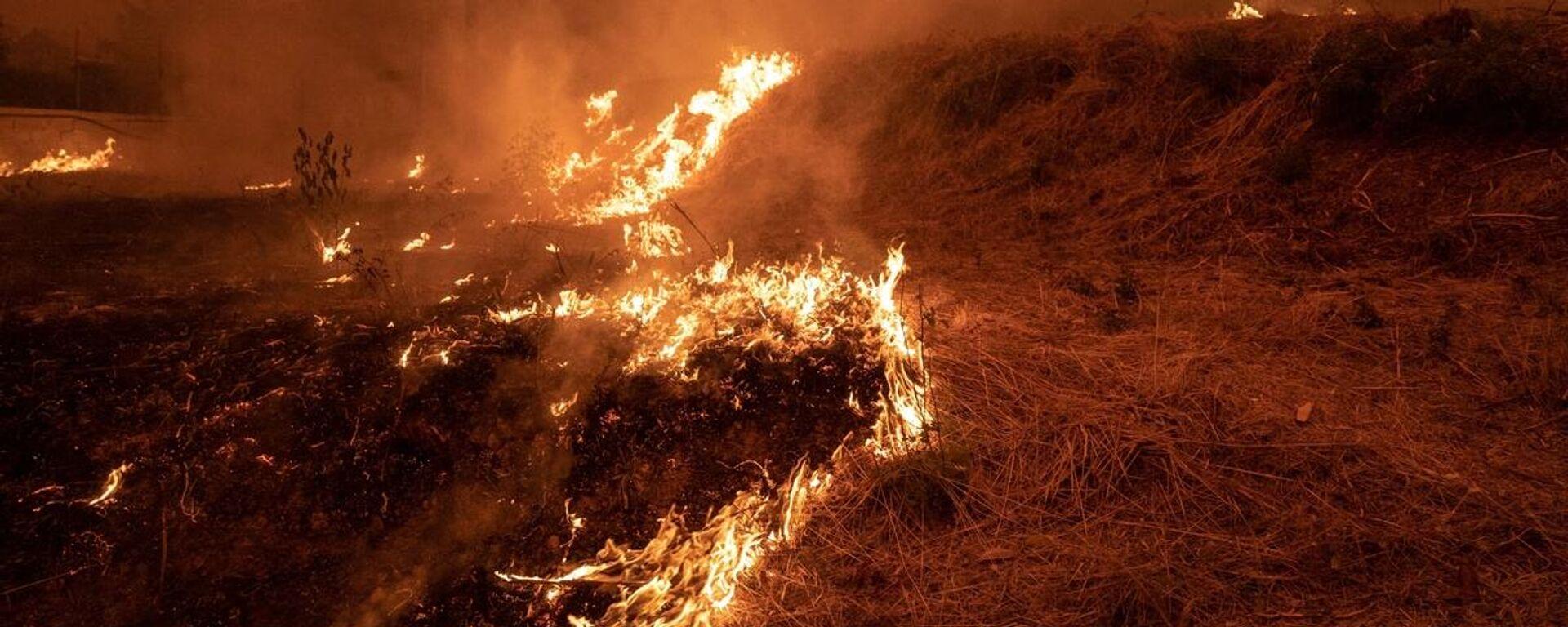 Πυρκαγιά στην Εύβοια - Sputnik Ελλάδα, 1920, 18.08.2021