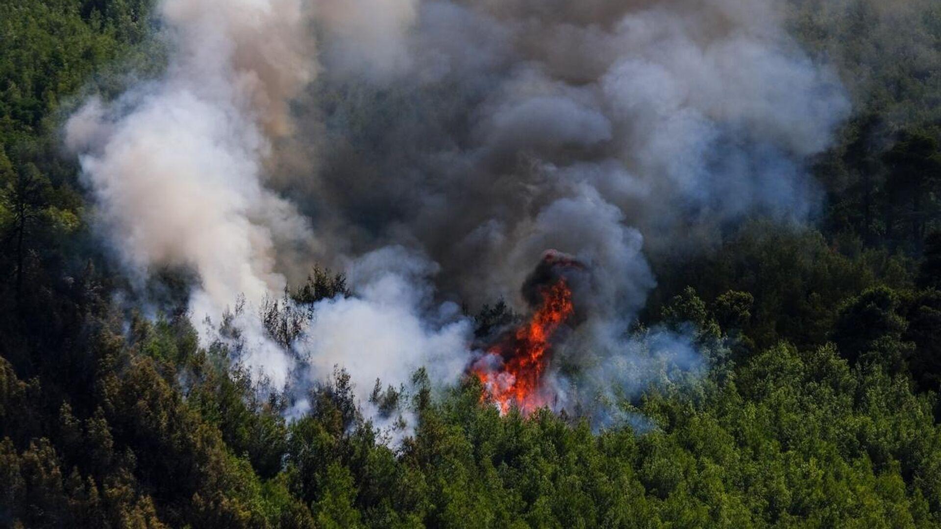Πυρκαγιά στα Βίλια - Sputnik Ελλάδα, 1920, 16.09.2021
