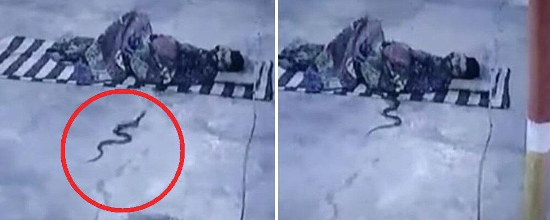 Κόμπρα χώνεται στα στρωσίδια άντρα που κοιμάται έξω από ναό στην Ινδία - Sputnik Ελλάδα, 1920, 11.09.2021