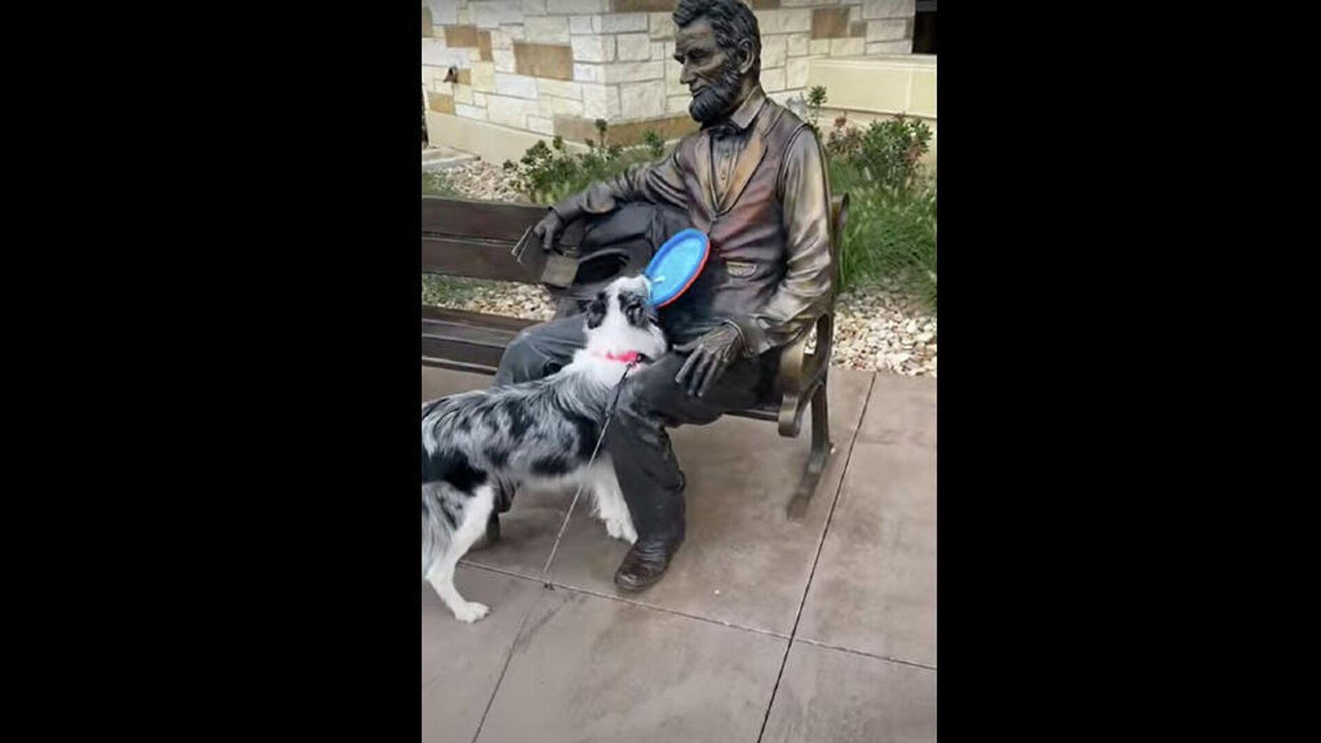 Σκύλος θέλει να παίξει φρίσμπι με ένα άγαλμα - Sputnik Ελλάδα, 1920, 26.09.2021