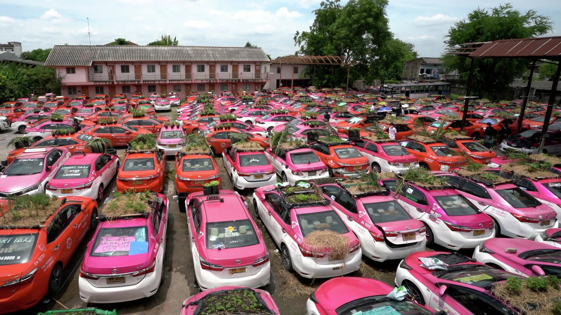 Δεκάδες εγκαταλελειμμένα ταξί μετατρέπονται σε μίνι λαχανόκηπους για άνεργους οδηγούς - Sputnik Ελλάδα, 1920, 21.09.2021