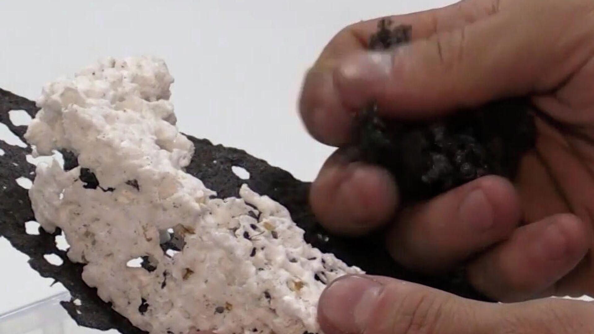 Οικολογικά σκουλήκια: Ερευνητές εκτρέφουν ασπόνδυλα που μπορούν να αφομοιώσουν πλαστικό - Sputnik Ελλάδα, 1920, 23.09.2021
