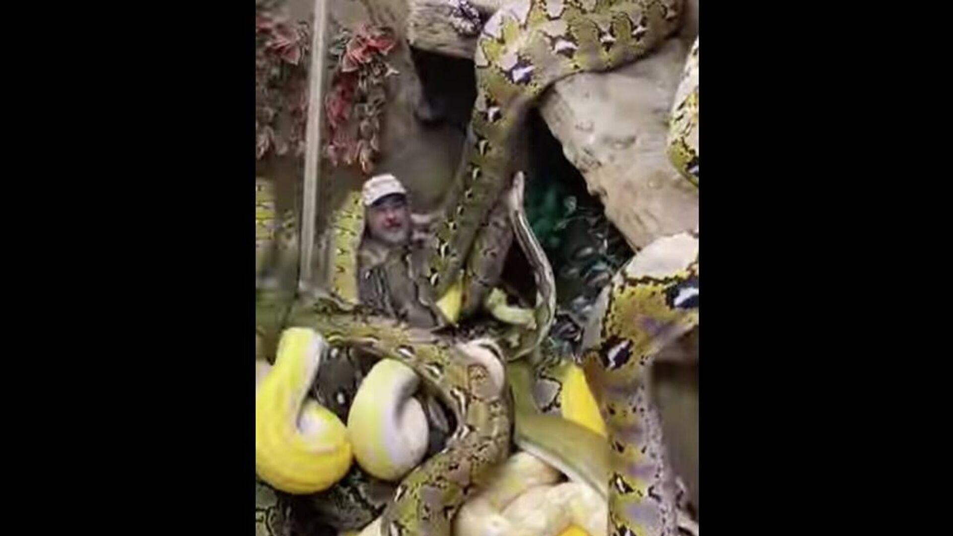 Άντρας είναι περικυκλωμένος από πελώρια φίδια - Sputnik Ελλάδα, 1920, 26.09.2021