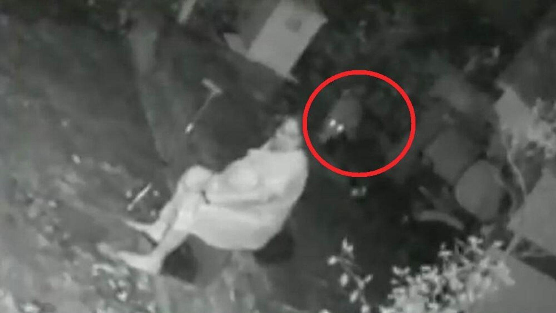 Γυναίκα διώχνει λεοπάρδαλη που της επιτέθηκε με τη μαγκούρα - Sputnik Ελλάδα, 1920, 01.10.2021