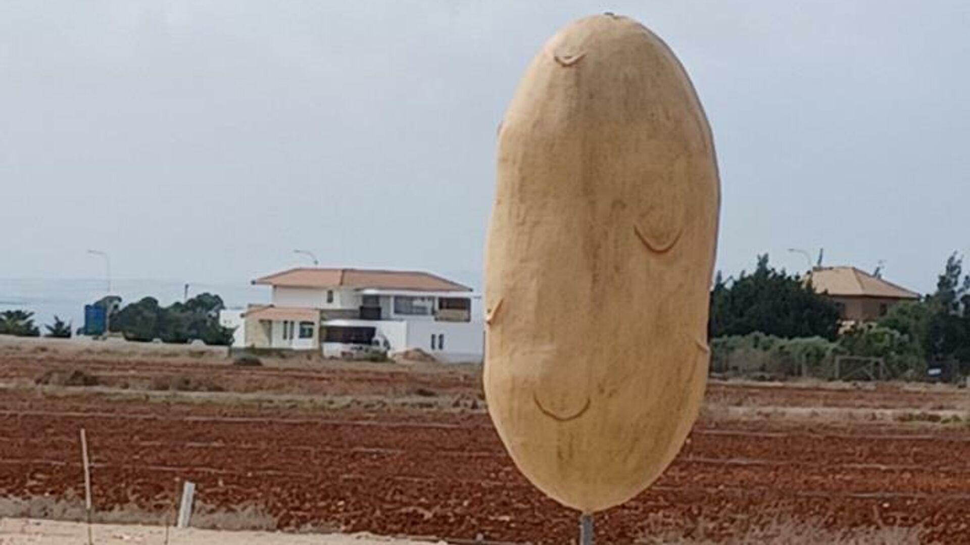 Μνημείο πατάτας σε χωριό στην Κύπρο - Sputnik Ελλάδα, 1920, 13.10.2021