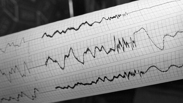 Καταγραφή σεισμικής δραστηριότητας - Sputnik Ελλάδα