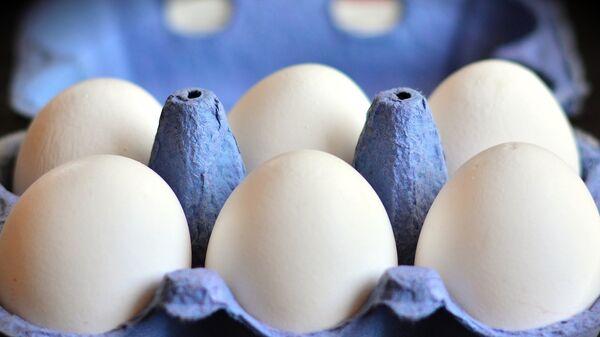 Αυγά σε θήκη - Sputnik Ελλάδα