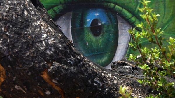 Το γκράφιτι στο Μάτι - Sputnik Ελλάδα