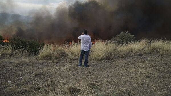 Φωτιά στην Πεντέλη - Sputnik Ελλάδα