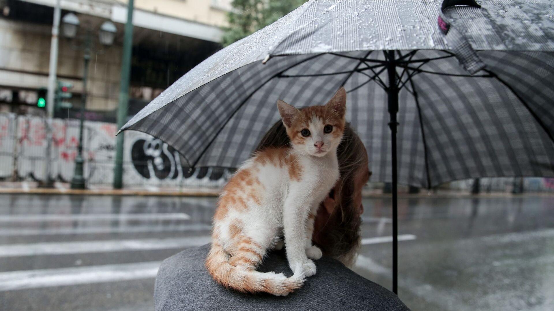 Βροχή στην Αθήνα - Sputnik Ελλάδα, 1920, 12.09.2021