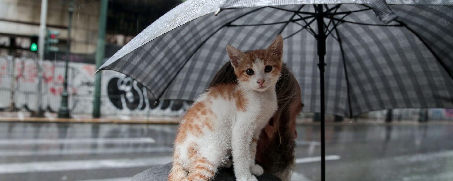 Βροχή στην Αθήνα - Sputnik Ελλάδα, 1920, 06.09.2021