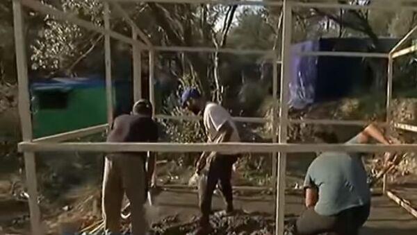 Μετανάστες χτίζουν πρόχειρα σπίτια σε δάσος του Σάμου - Sputnik Ελλάδα