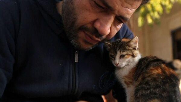 Ο άνθρωπος - προστάτης των ζώων που τραυματίστηκαν στον πόλεμο της Συρίας  - Sputnik Ελλάδα