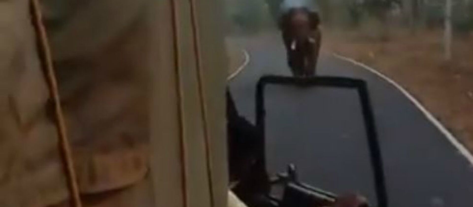 Οργισμένος ελέφαντας παίρνει στο κυνήγι φορτηγό σε Εθνικό Πάρκο στην Ινδία - Sputnik Ελλάδα, 1920, 18.01.2020