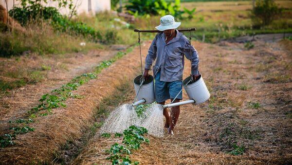 Αγρότης ποτίζει τις καλλιέργειες.  - Sputnik Ελλάδα