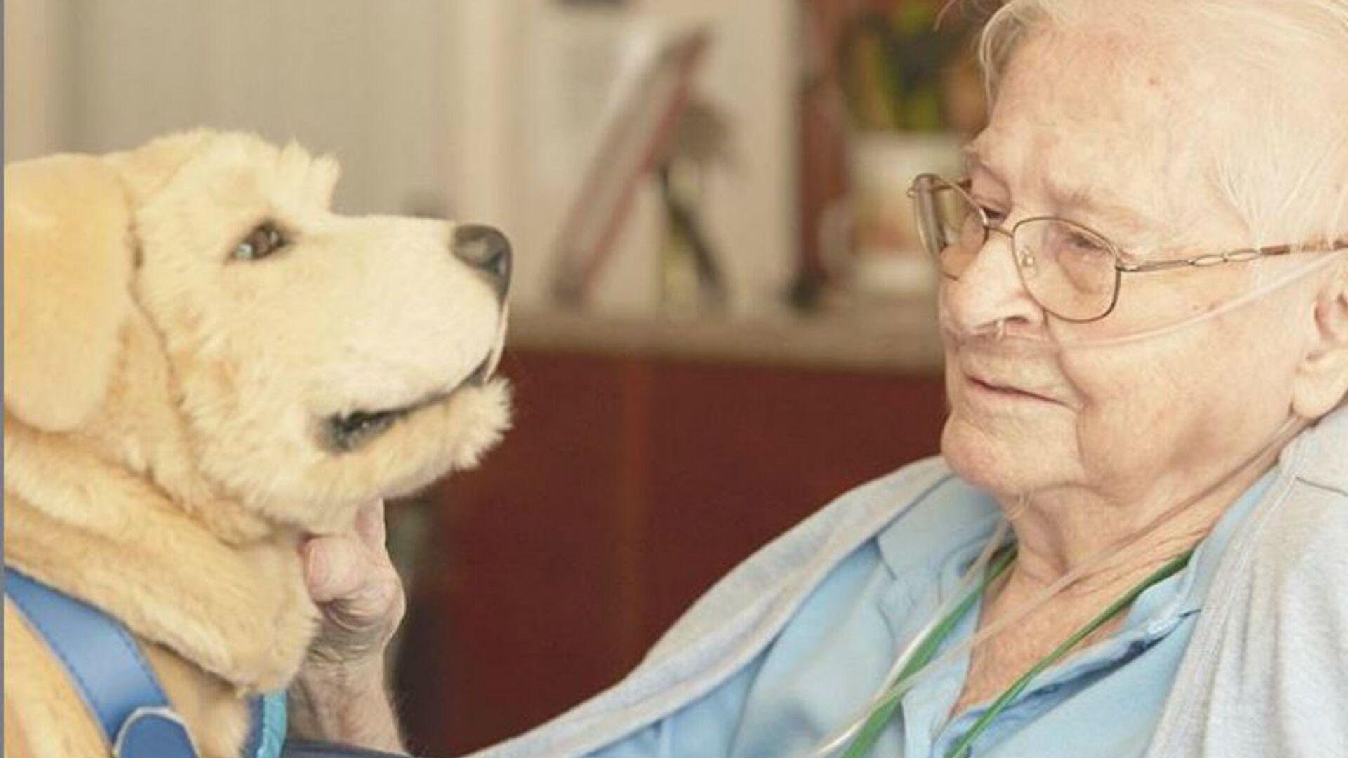 Σκυλάκι ρομπότ κρατάει παρέα σε ασθενείς με άνοια - Sputnik Ελλάδα, 1920, 09.10.2021