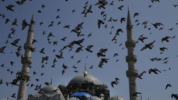 Το Γενί Τζαμί στην Κωνσταντινούπολη, στην Τουρκία - Sputnik Ελλάδα