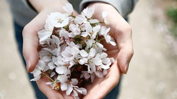 Χέρια με λουλούδια - Sputnik Ελλάδα
