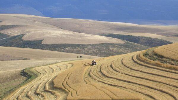 Αγροτικές εκτάσεις στη Νότια Αφρική - Sputnik Ελλάδα