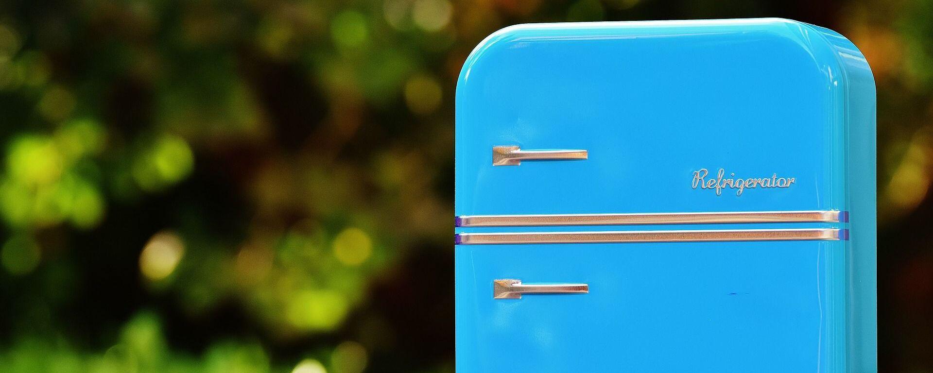 Ένα ψυγείο (φωτ. αρχείου) - Sputnik Ελλάδα, 1920, 08.10.2021