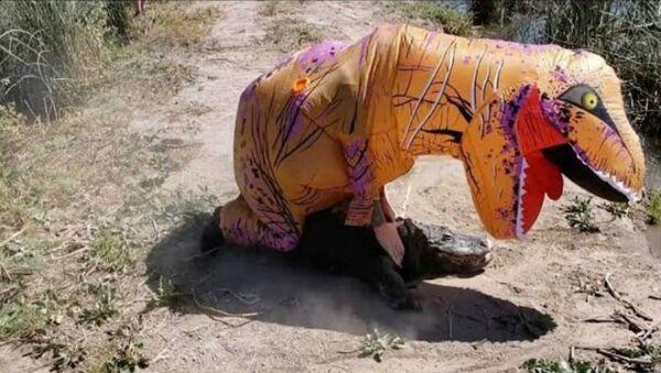 Άντρας με στολή τυραννόσαυρου παλεύει με αλιγάτορας - Sputnik Ελλάδα