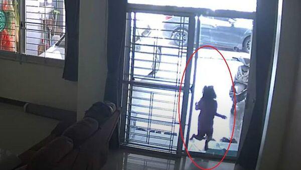Κοριτσάκι περνάει μέσα από τζαμαρία και τραυματίζεται - Sputnik Ελλάδα